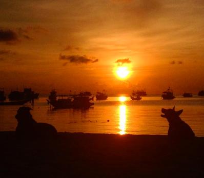 sairee beach coucher de soleil koh tao